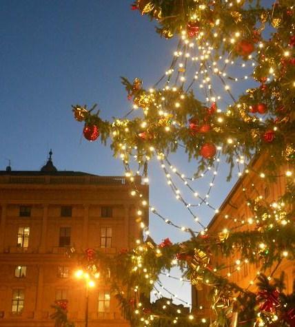 Natale 2012 (11)