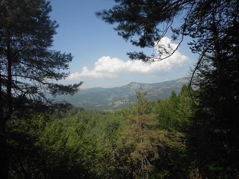 Val D'Aveto (6)