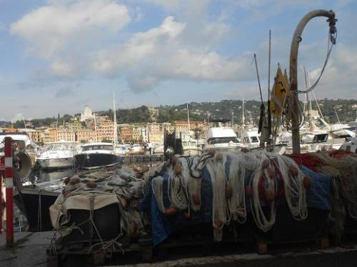 Santa Margherita 20