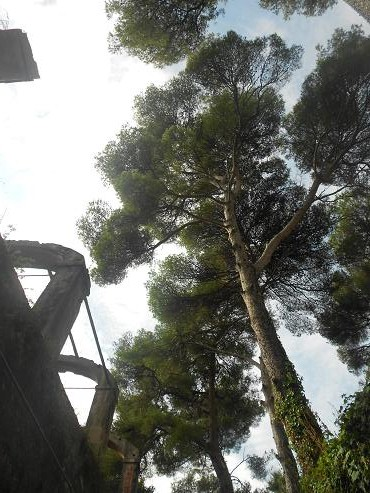 Santa Margherita Ligure 26