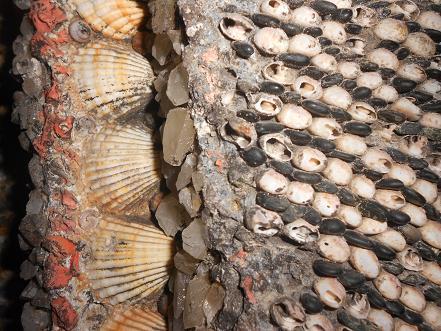 Grotta Doria (14)
