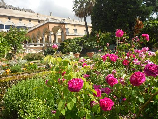 Palazzo del Principe (13)