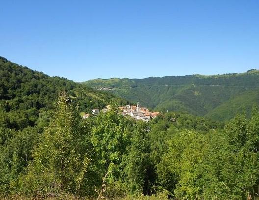 Rondanina (44)