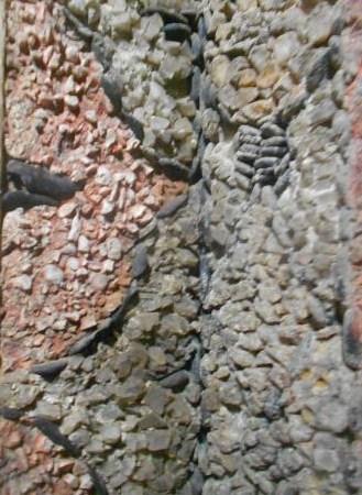 Grotta Grimaldi Sauli (18a)