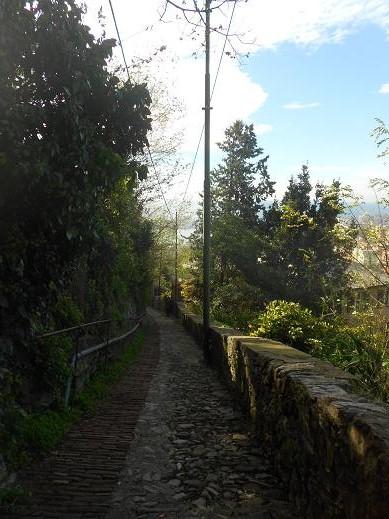 Salita Porta Chiappe (18)