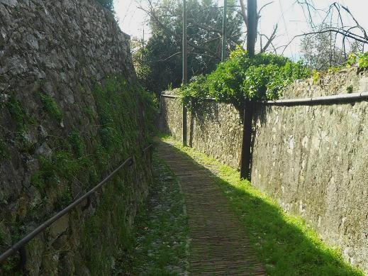 Salita Porta Chiappe (23)
