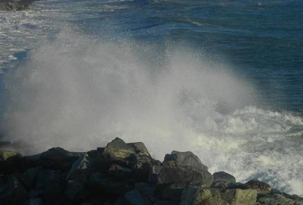 Mare (7)