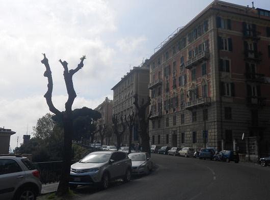 Corso Firenze 2