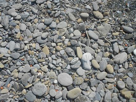 Vernazza - la spiaggia (14)