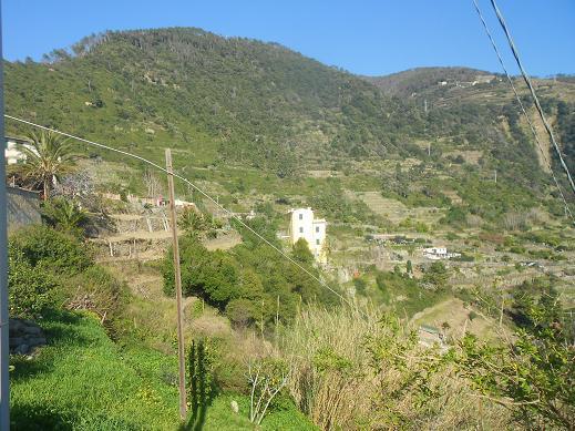 Corniglia (7)