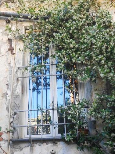 San Bartolomeo dell'Olivella (16a)