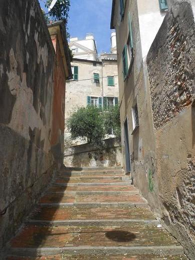 San Bartolomeo dell'Olivella (3)