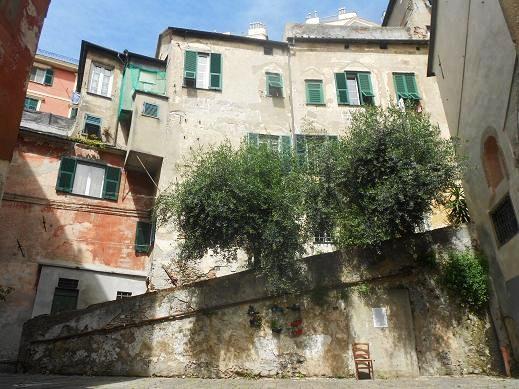 San Bartolomeo dell'Olivella (7a)