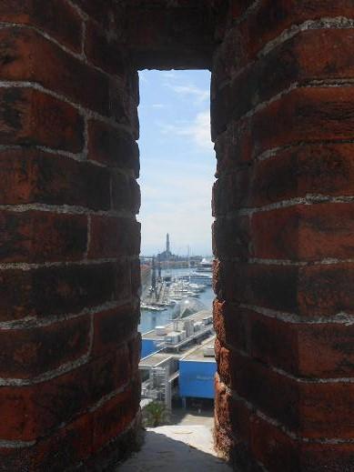 Panorama da Torre dei Morchi (3)