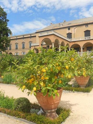 Villa del Principe (3)