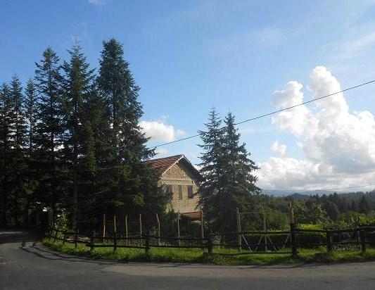 Pietranera (19)