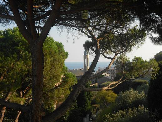 Villa Brignole Sale (40)