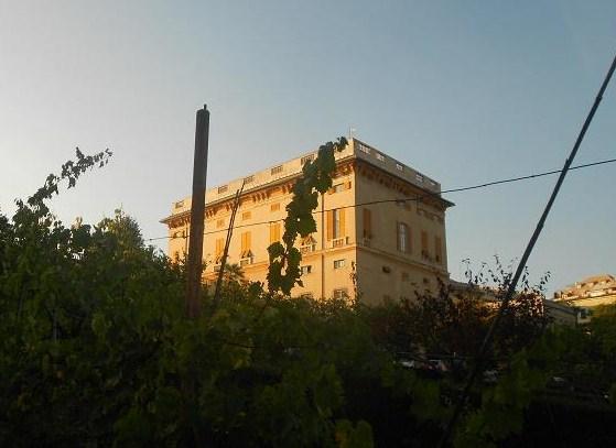 Villa Brignole Sale (45)