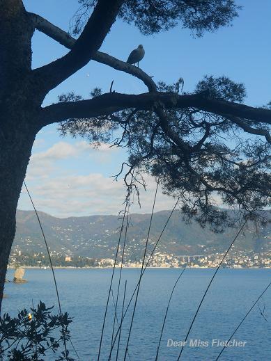 Verso Portofino (3)