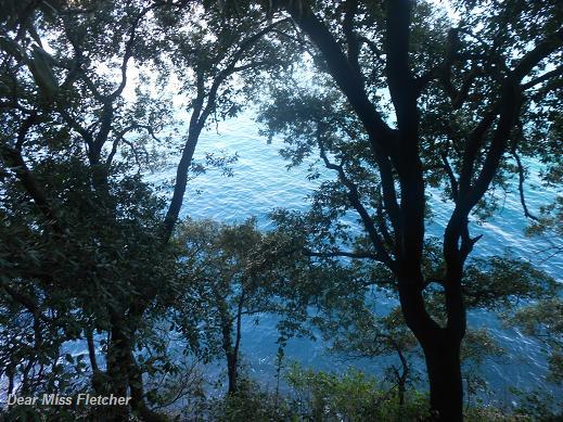 Verso Portofino (4)