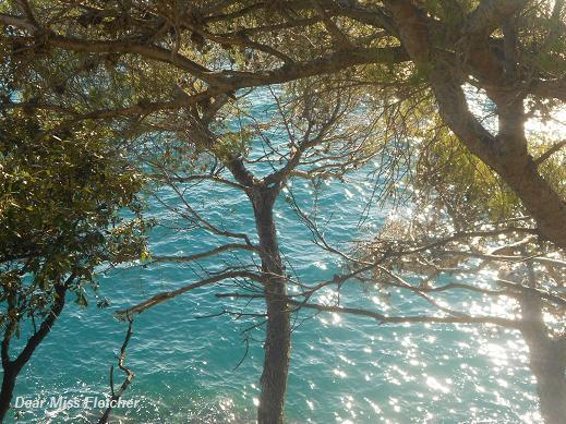 Verso Portofino (6)