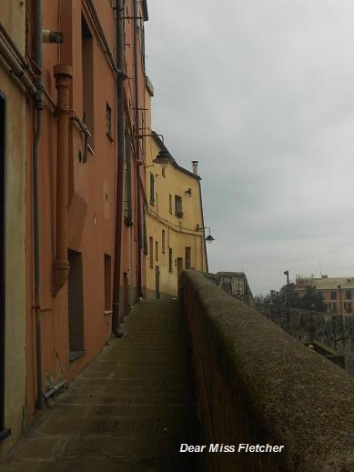 Mura del Barbarossa (15)