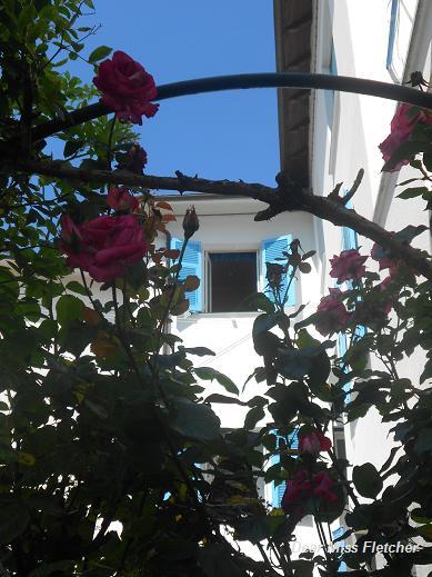 Casa delle rondini (12)