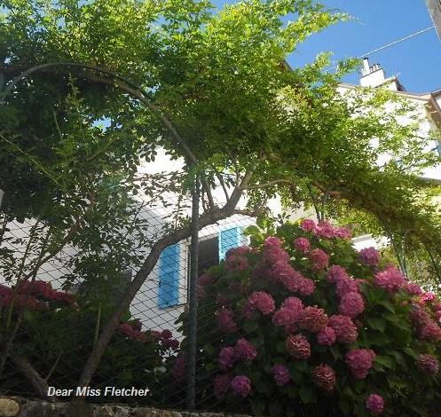 Casa delle rondini (5)