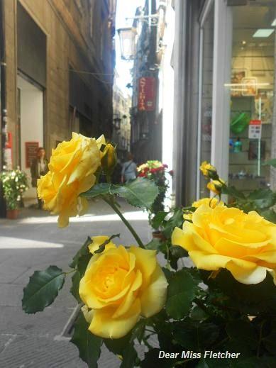 Via Luccoli (11)