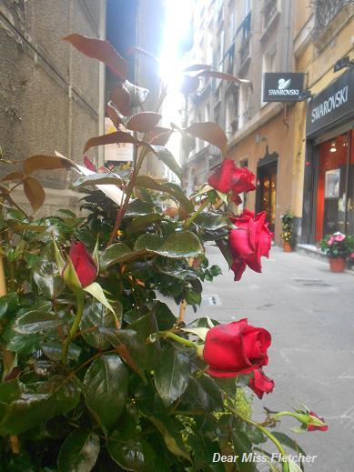 Via Luccoli (13)