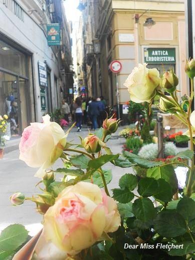 Via Luccoli (15)