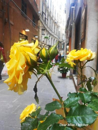 Via Luccoli (19)
