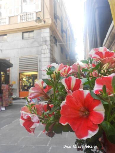 Via Luccoli (4)