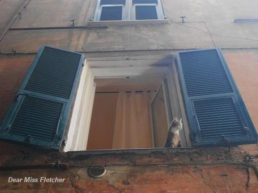Via dei Giustiniani (3)