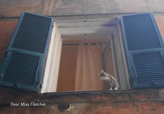 Via dei Giustiniani (4)
