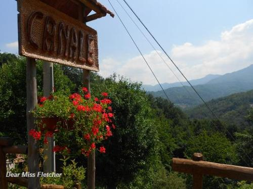 Canale (19)