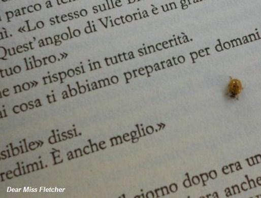 frasi d'amore libri