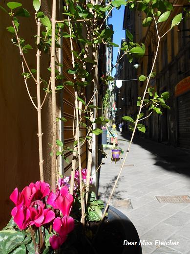 Via della Maddalena (22)