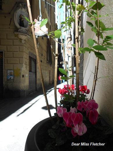 Via della Maddalena (9)