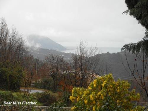 Monte di Portofino (2)