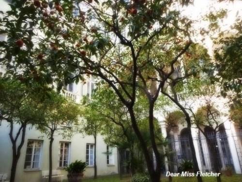 Palazzo Balbi Senarega (3)