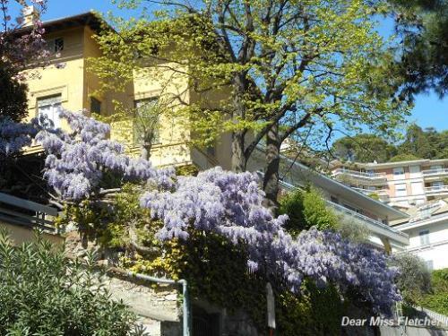 Via Piaggio (3)