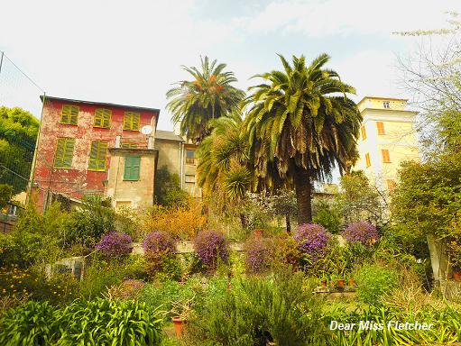 Villa Spinola Dufour (17)