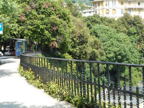 Corso Firenze (10)