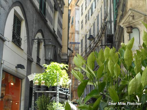 Via Luccoli (22)