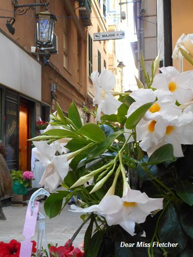 Via Luccoli (7)