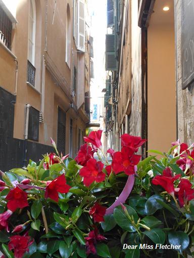 Via Luccoli (9)