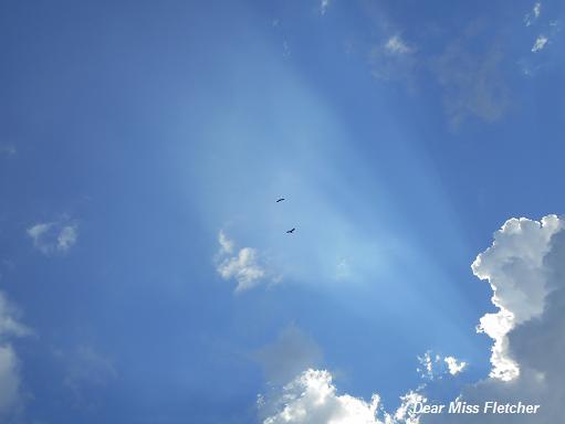 Nuvole (7)